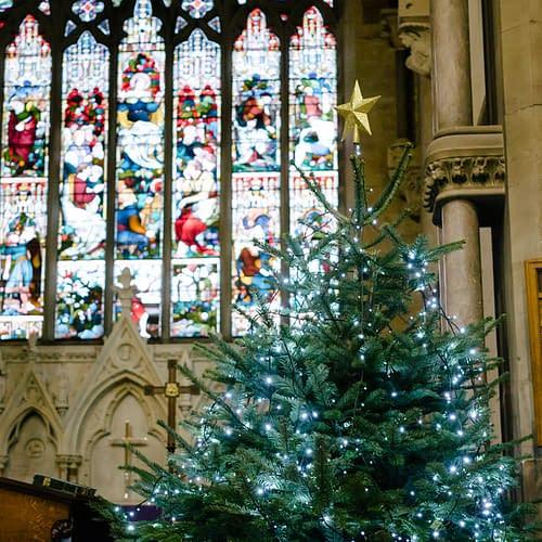 Christmas Tree Festival at St Mark's ChurchChristmas Tree Festival at St Mark's Church