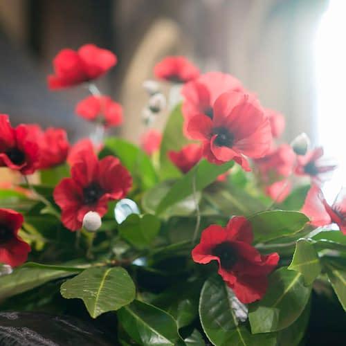 Poppy arrangement on Remembrance Sunday at St Mark's Church